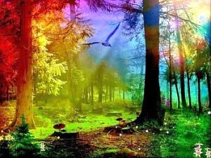 Magical_Nature_Reiki[1]