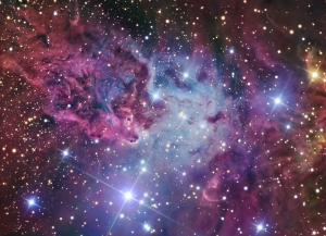 lrg_foxfur_nebula_ngc2264[1]