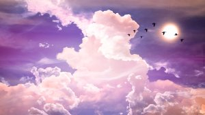birdq_flying_on_the_sky_wallpaper_1920x1080_hd_by_yattamigeru-d56fo29[1]